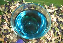 Maya Bay Tea / Probably the most beautiful tea in the world! / by BlueChai - Dried Butterfly Pea Shop