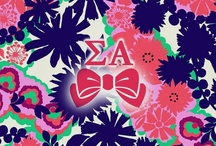 Sigma Alpha / by Lesli Buttermore