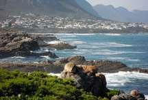 Hermanus/Overberg, South Africa / Round and about my hometown in the Western Cape / by Ingrid Els