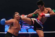Knock out! / Knock out collection. Muay thai. Kickboxing. Boxing. / by Jochem Vrhl
