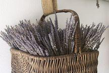 baskets / by Christel Wagemans