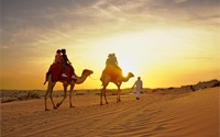 Dubai  / Want to escape to the sun, sea and city life of Dubai with our amazing flashsale deal - £299 return from London incl all fees & taxes. 27 JUNE only - until 8pm or sold out. 100 flights only - be quick! http://www.flightcentre.co.uk/flashsale / by Flight Centre UK