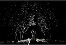 ♡❤Future Galante❤♡ / by Courtney Lynn