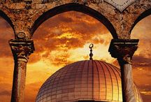Palestine / by Bayan Jaber