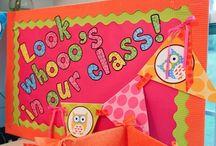 Kindergarten: Decorate and Organize / by Lauren Carroll