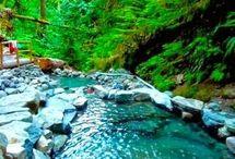 Pacific Northwest / by Sam