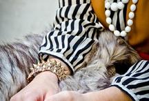 fashion. / by Victoria Slane
