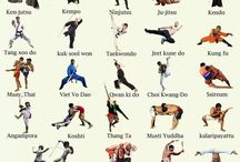 Martial arts / Self defense, fighting styles, and kicking butt with flavor! / by Donald Wright