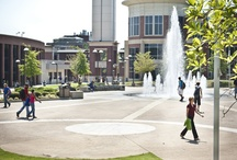 U of M Campus / Take a virtual tour of the U of M's scenic campus.  / by Memphis Athletics
