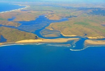 Aerial Point Reyes / by Point Reyes National Seashore Association
