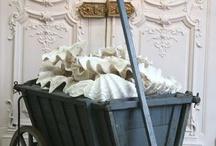 Seashells & Seashells Decor 2 / by Ruth Sanger