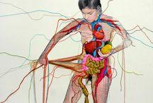 anatomy / by Art Teacher Leeds