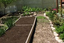 """Gardening Ideas / by Terri """"Frugal After Fifty"""" Ness"""