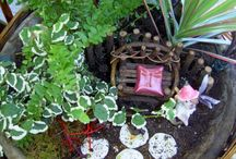 A Fairy Garden / I love making Fairy garden they great for the whole family Creating a Fairy Garden will fill the need to create as well as the need to garden during these cold winter months. / by Nancy Vance