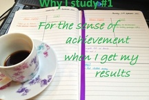 Reasons for Studying Harder / by Karin Wahl