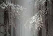 SNOW / by Raul Dado