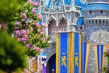 Disney Magic / by Gordon Best