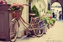 I Want To Ride My Bicycle... / by Millie Bunn