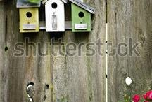 birdhouses / by Shianne Etzerza