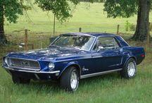 Mustangs / by Tht_1_homie 13_c;