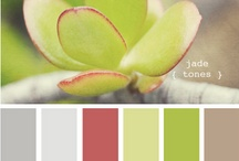 Color Inspiration / by Carrie @ Dittle Dattle
