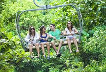 Mystic Mountain, Ocho Rios, Jamaica / by Paradise Palms Jamaica