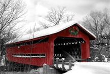 bridges / by Vito Cottone
