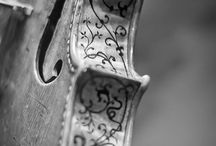 Detail / by Sebastian Ebarb
