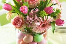 Spring Ideas / by Dawn Gilley