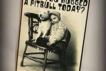 It's A Pitbull Thing / by Mina Schneider
