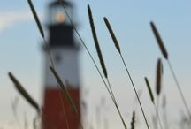 Light House  / by beverly frey