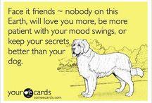 Pet Health / by HealthDesigns.com