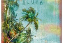 Hawaii / by Nora Peterson
