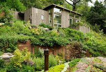 Gardening / by Maeling