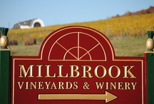 Things We Love About Our Winery / by Millbrook Winery