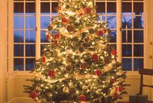 Holidays and Parties / by Hope Gilstrap