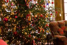 Trees / Anything tree. Christmas tree, lawn and garden trees, seasonal trees. / by Patsy Bell Hobson