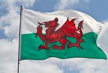 Cymru - Wales / Motto: Cymru am byth (Wales for ever) / by Patti Pat