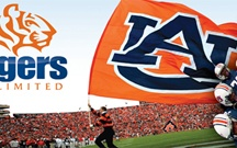 All Things Auburn / by Carrie Friday