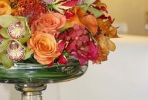 Flowers / Flowers, Wedding Flowers, Bouquets, Floral Arrangements, Favorite Flowers / by Shelly Balthazor