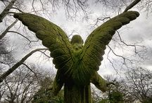 ANGELS IN STONE / by Tonja Owens