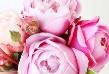 Flowers / by Korean American Mommy