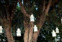 Wedding / by Ashley Mariani