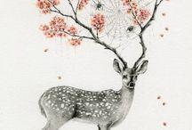 All Things Deer / by Karen Harrington