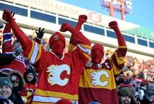 Crazy fans! / by HockeyShotStore