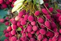 Sangria and Vino / My favorite Sangria ingredients / by Thelittlehouse Boynton Beach