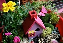 Fairy garden / by Christy Kendall