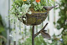 Gardening / Outdoor / by Melissa James