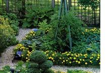 Vegetable Garden / by Cedar Valley Arboretum