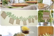 Party Ideas/baby showers / by Heather Watts